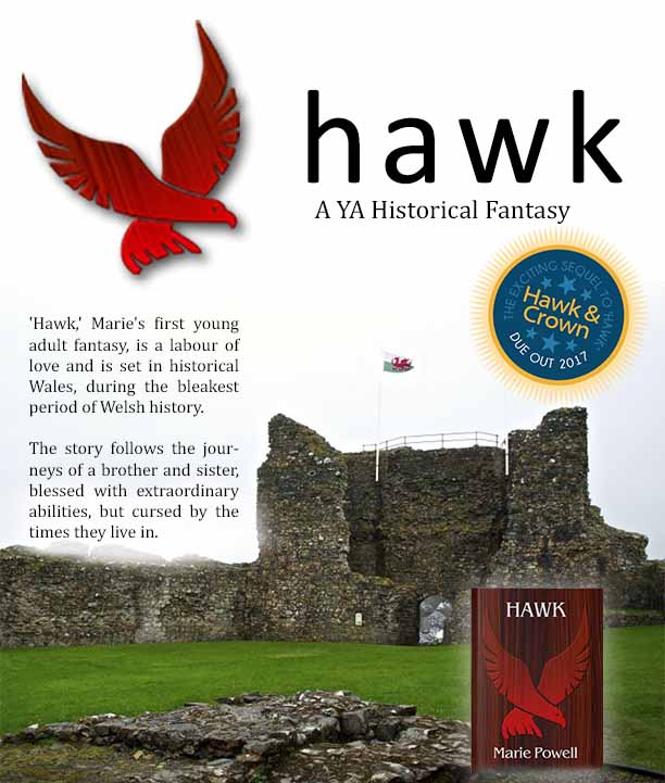 About Marie's YA novel Hawk