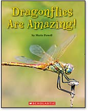 Dragonflies are Amazing!