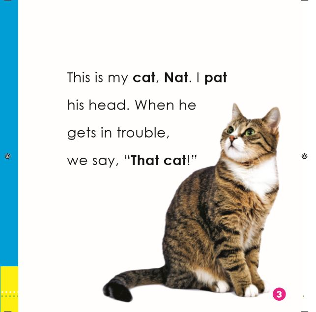 Sample Page from Word Families I book: That Cat!